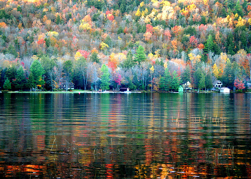 Reflection of Autumn