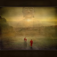 Buddha's Light