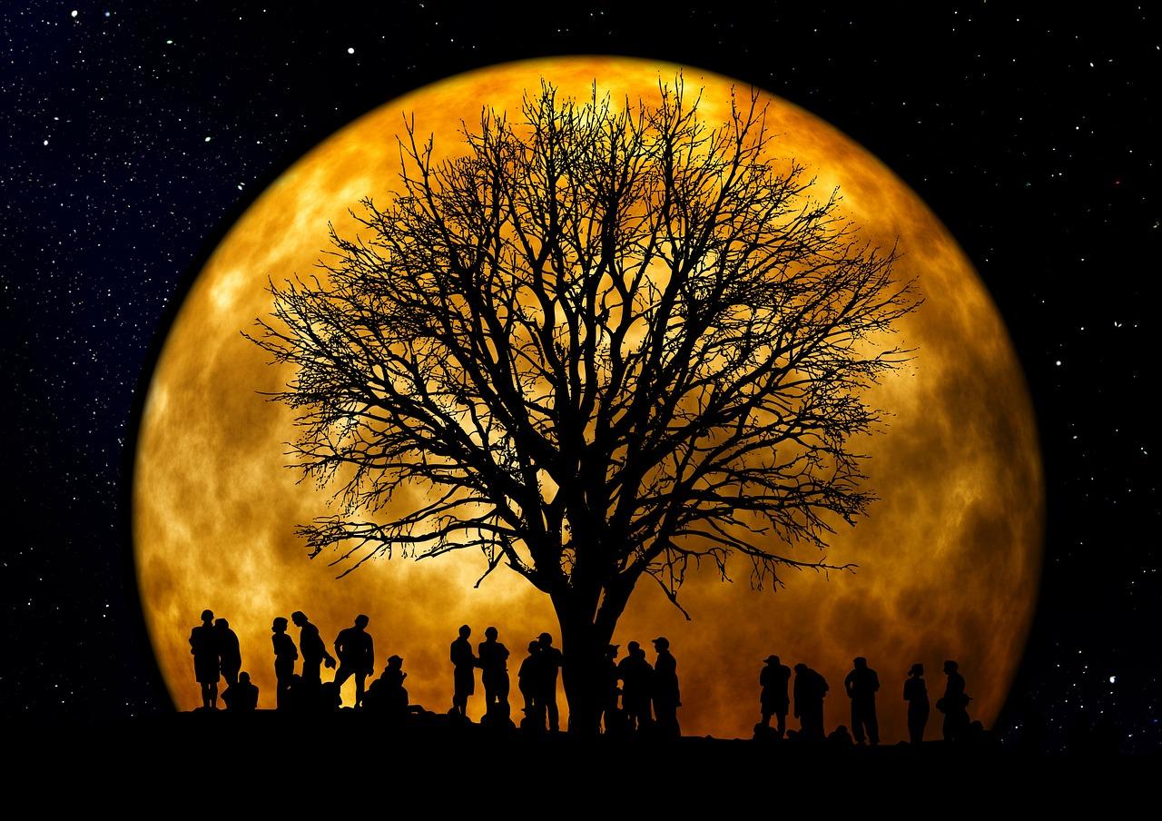 Celestial Tree Grounding Technique