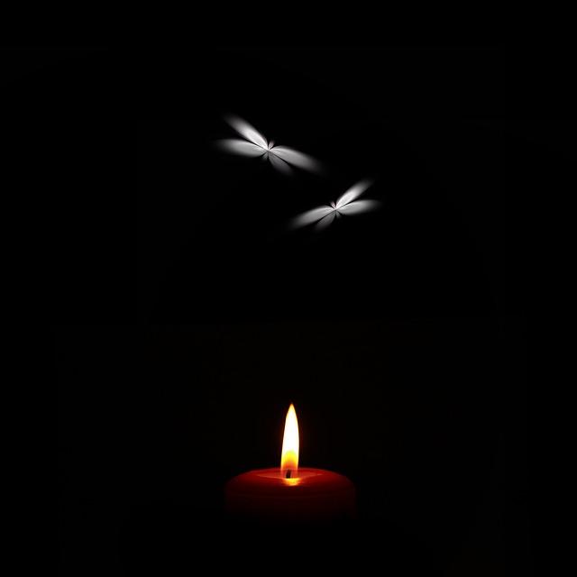 Transitions: A Light Story