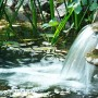 Can the Flow of Reiki Be Restricted