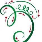 Iava Symbol