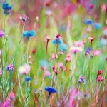 How Reiki Helps Heal Naturally