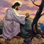 The Ascended Masters Series- Jesus
