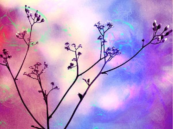 Receiving Distant Healing