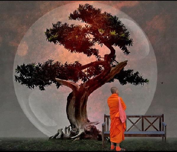 Wisdom from Zen