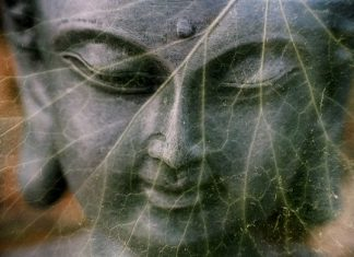 the healing power of mantras and reiki