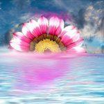 Chakra Empowermwnt Visualization