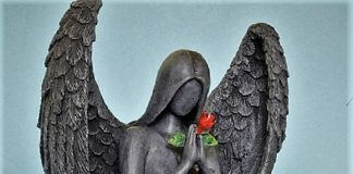 Bless your Love Life with Angel Wings through Reiki and Archangel Chamuel