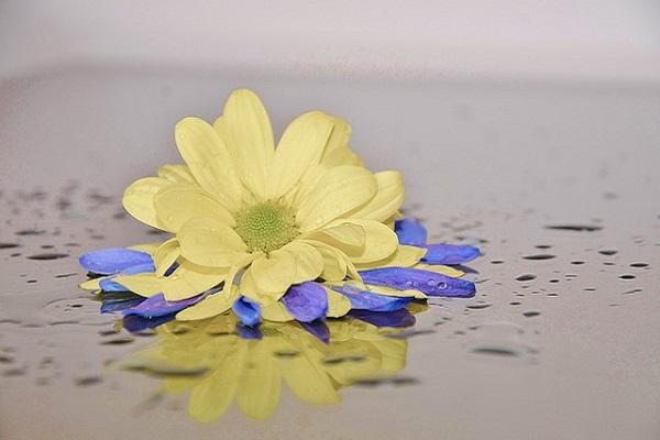 3Ways to Increase the Effectiveness of Energy Healing
