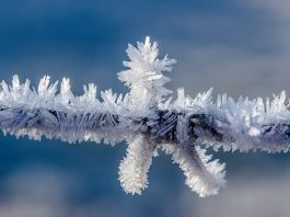 How to Tackle the Winter Blues with Reiki