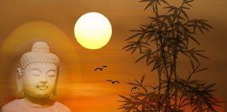 Sun Meditation for Healing
