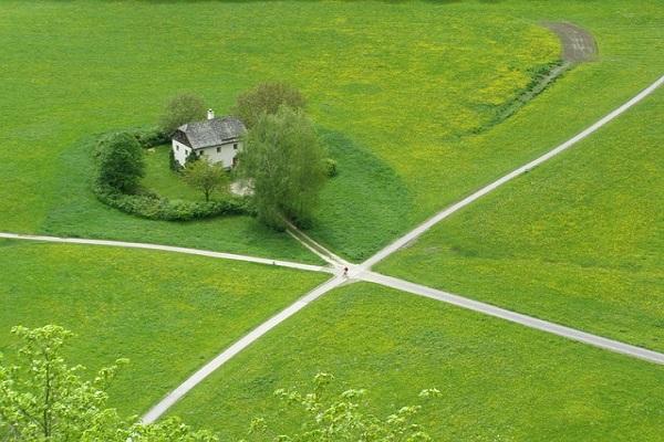 Our Reiki Path