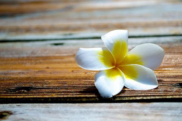 Healing of Mood Swings with Reiki