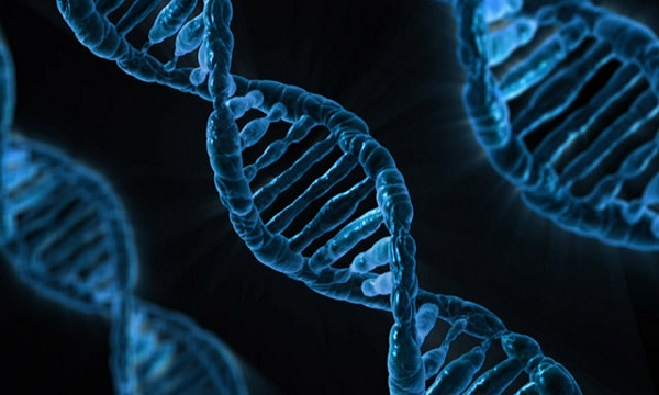 DNA strands activation and numerological path of soul's journey