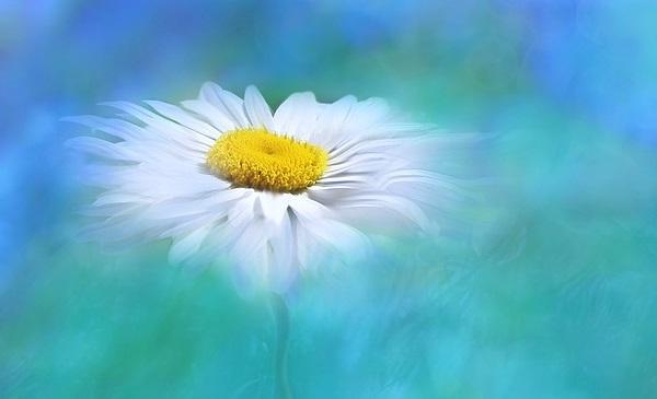 Reiki healing & karma