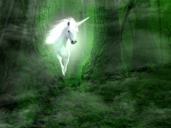 My Encounter with Unicorns and How they Guided Me to My Calling