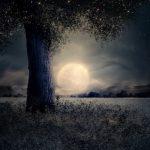 Full Moon Meditation - Release your Blocks