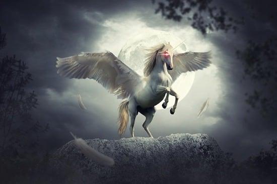 Empower your Feminine Energies - Communicating with Moon & Unicorn's Animal Spirit