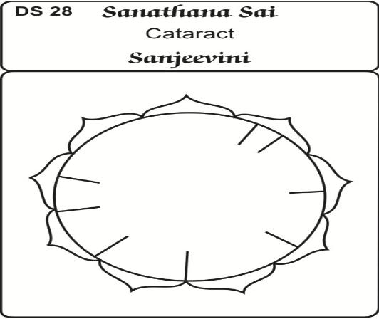 energy circle