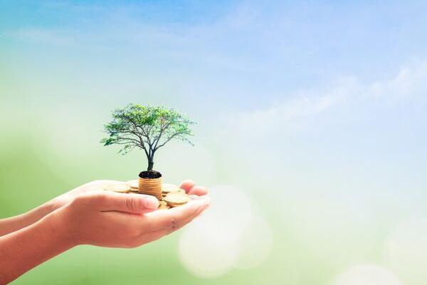 Heal Your Money Limiting Beliefs for Reiki Success