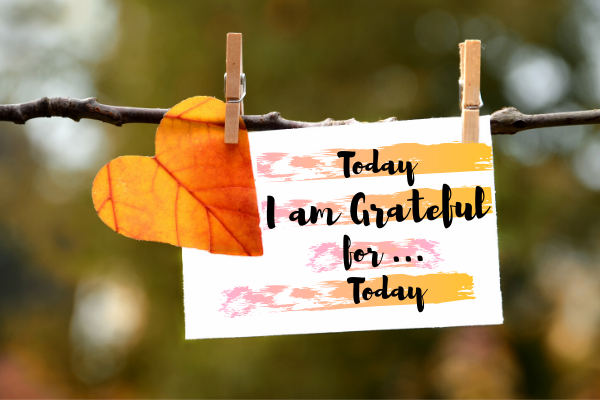 Gratitude – Create the Magical Life